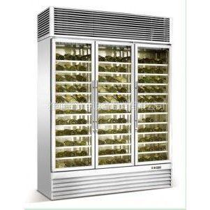 供应三门红酒展示柜/风冷/压缩机/微电脑可/型号BJ-1260F