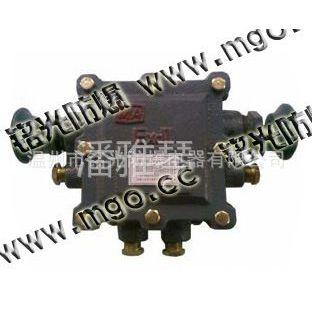 供应BHD2-20/660(380)/127-6T矿用隔爆型低压电缆接线盒(图)