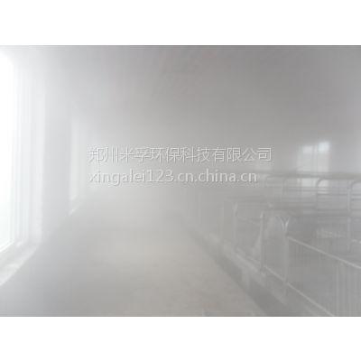 米孚科技供应养殖场高压喷雾自动消毒除臭设备