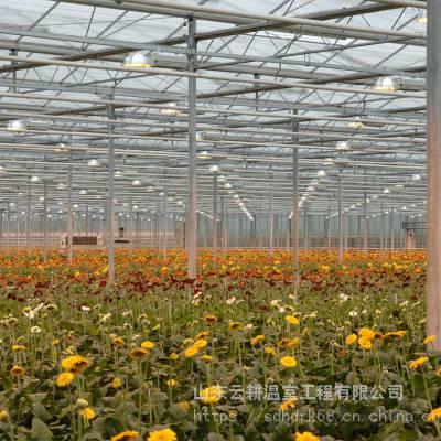 山东德州专业花卉温室、育苗温室、展示温室建设团队