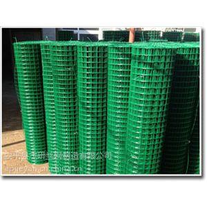 野外养殖圈地围网,绿色养殖网,动物养殖护栏网厂家