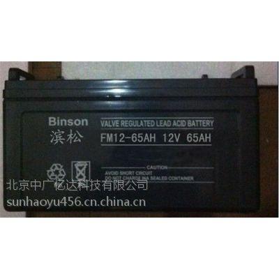 滨松蓄电池12V38AH报价及参数