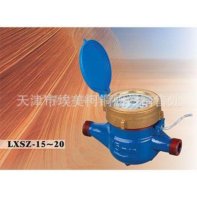 供应天津批发埃美柯 LXSZ 直读式电子远传液封水表 DN15-20