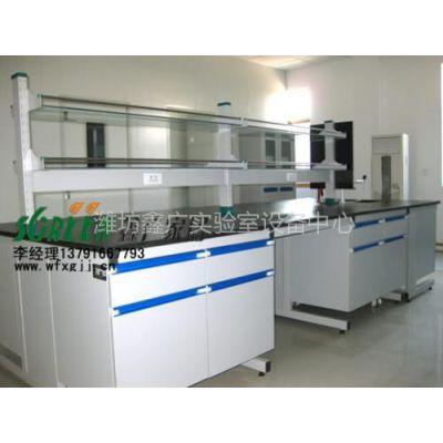 供应潍坊实验室家具|潍坊天平台高温台|潍坊通风橱|潍坊气瓶柜0305