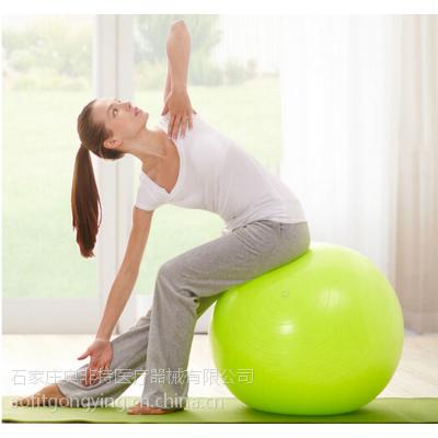 厂家直销批发 体操球 瑜伽球 彩色PVC瑜伽球 OEM弹力安全瑜伽球