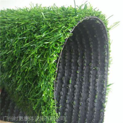 广东时宽SK8020A人造草坪,仿真人工草皮,2M宽人造假草,PE草坪