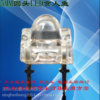 兴合盛供应车灯光源专用LED食人鱼灯珠,车灯专用食人鱼LED