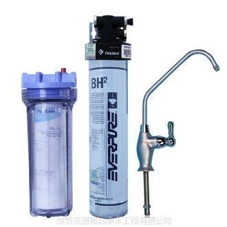 供应潍坊美国爱惠浦超滤净水机QL2-BH(2) 家用净水设备