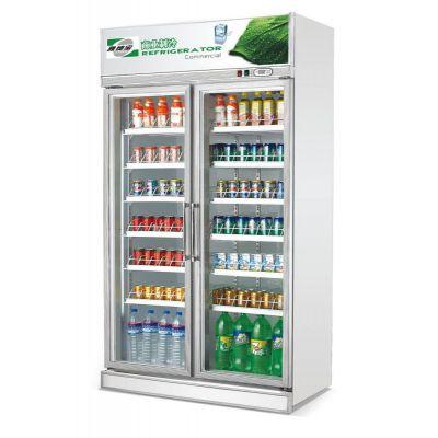 供应供应雅绅宝豪华款双门饮料展示柜/立式雪柜/牛奶冷藏机/饮料冷柜