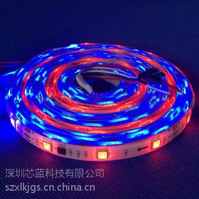 WS2811幻彩灯带 5050贴片12V灯带低压全彩灯条 WS2812B幻彩灯条