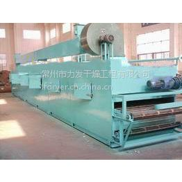 厂家直销槟榔多层网带干燥机、干燥设备