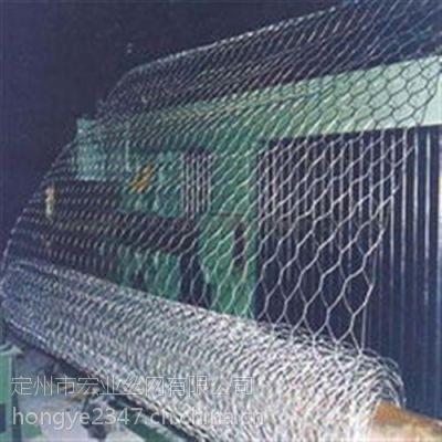 六角网厂家(图),六角网机,宏业丝网