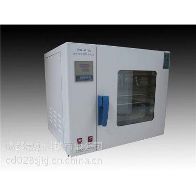 成都晟杰电热恒温鼓风干燥箱DHG-9070A