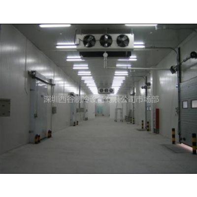 供应高品质节能环保深圳可移动式速冻冷库 移动式冷库