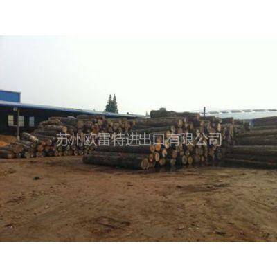 供应张家港木材进口代理 张家港木材报关代理