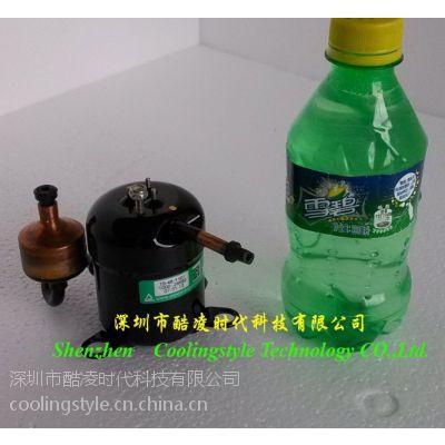 供应微小型高端精密冷水机用直流变频压缩机48V