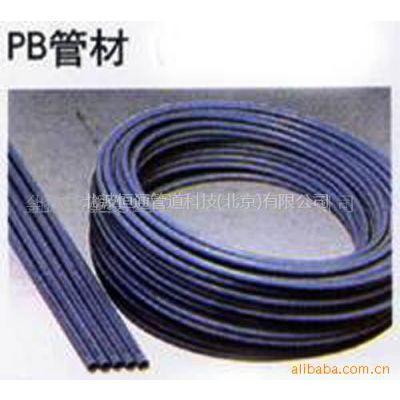 供应 金德 PB管材管件聚丁烯 PB管