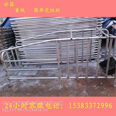 养猪设备厂家2.1*6十个位母猪定位栏