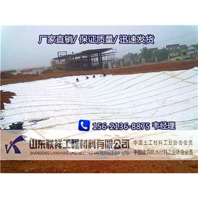 四川膨润土防水毯价格就找联祥防水毯厂家