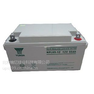 北京电池专卖汤浅蓄电池12V100AH铅酸型的全国免运费