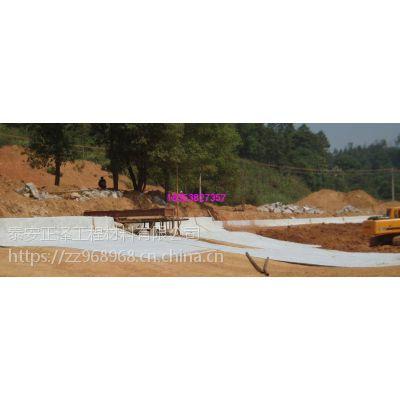 垃圾填埋场膨润土防水毯防水性能强 价格美丽