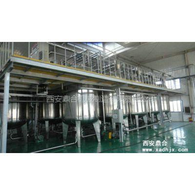 西安鼎合年产300T果胶生产设备