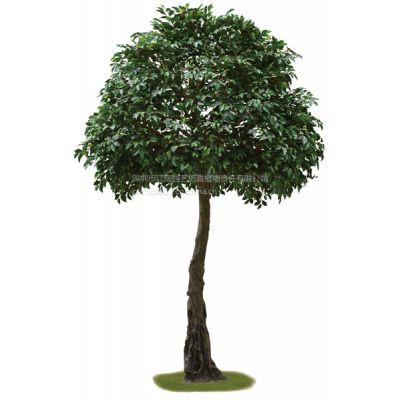 供应深圳江南园艺仿真植物 仿真榕树 仿真枫树 厂家直销大树类