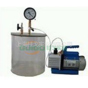 供应真空排气装置GGBH-300B/抽真空装置 包括气缸真空泵,合成玻璃,出口瓦莱斯