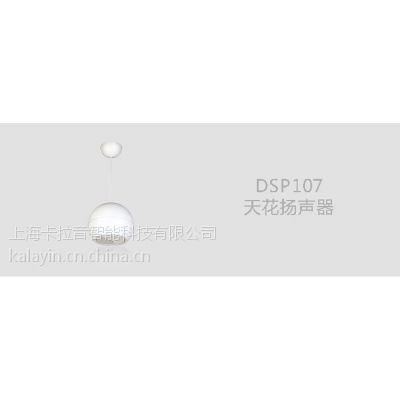 DSPPA 迪士普 DSP107 吊球音响 吊装喇叭