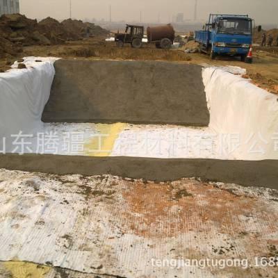 山东腾疆生产覆膜型膨润土防水毯,优质防水毯各种土工及工程材料邵经理 15621536066