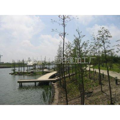 供应华东理工大学膜结构景观篷,聚翼校园样板景观篷