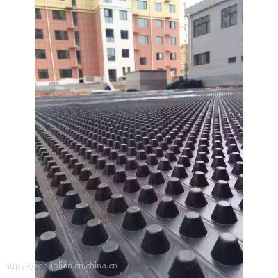 排水板厂家/专业排水板生产厂家/排水板质优价廉/可定制