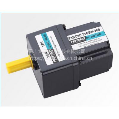 厂家报价AC220V110V无刷电机FEITENG