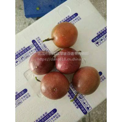 广西特产新鲜水果百香果 西番莲 鸡蛋果
