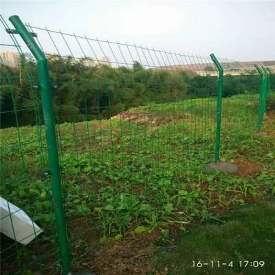 双边丝圈地隔离网 园林绿化围栏网 烟台果园防护网
