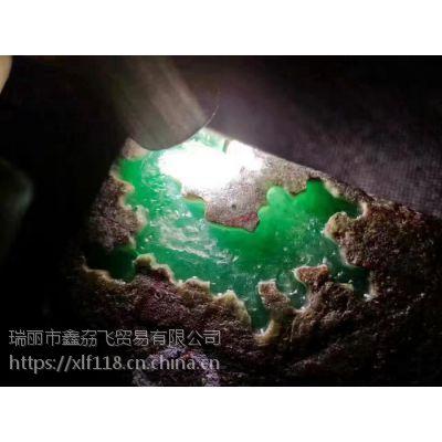 鑫劦飞翡翠年代OX203缅甸翡翠原石 高冰阳绿翡翠赌石