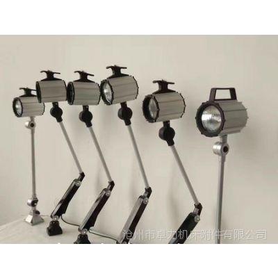 沧州卓力 厂家供应卤钨工作灯丨卤钨工作灯规格 可定制