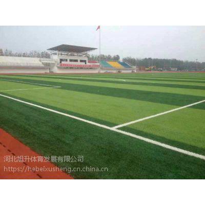 人造草坪场地设计与施工