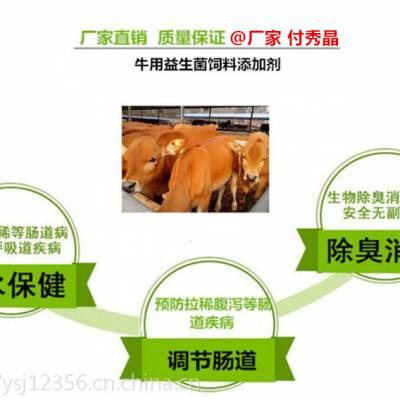 牛羊瘦怎么办牛羊用益生菌有效解决