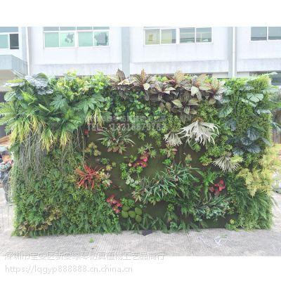 深圳绿琴厂家直销仿真植物墙绿植墙 人造假花假树叶 金钱草尤加利绢花 婚庆装饰美化绿化假植物
