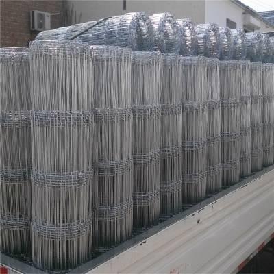 优质不锈钢网片 江苏抗绣网片 优盾丝网电焊网片