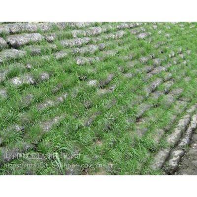 广西生态袋土工袋护坡袋生产厂家哪家好价格多少钱