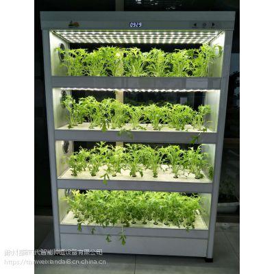 植物工厂生产展示型全 智能植物净化器科研教育器械 城市农场种菜机