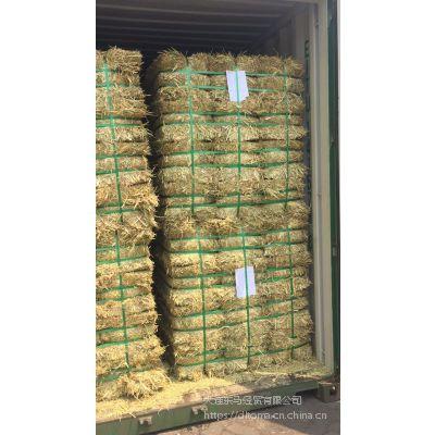 天津港 大连港销售澳洲燕麦草