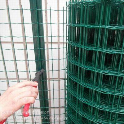 高速公路专用隔离网 云南养鸡专用防护网 安平护栏网价格