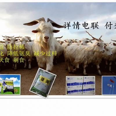 羊瘤胃消化不好厌食用养羊益生菌