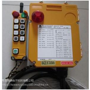 山东青岛、济南、淄博、烟台代理销售台湾禹鼎F24-8D 工业遥控器技术咨询