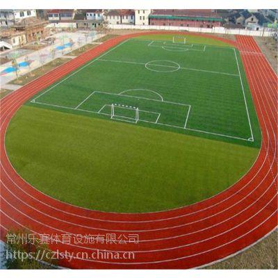 常州乐赛体育南京运动场防滑性塑胶跑道建设厂家直销混合型塑胶跑道耐磨材料