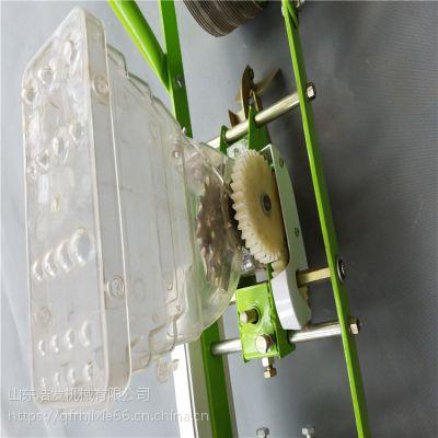 手推式5行种子蔬菜播种机 中药材种子精播机