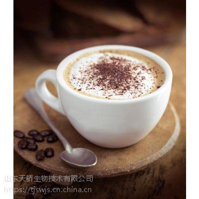 山东天骄厂家直供凯瑞玛植脂末奶精咖啡伴侣C40-1含乳食品基料粉固体饮料25公斤/袋